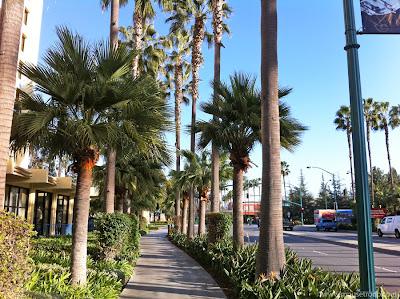 Paradise Pier Hotel Disneyland Drive walk parks Resort