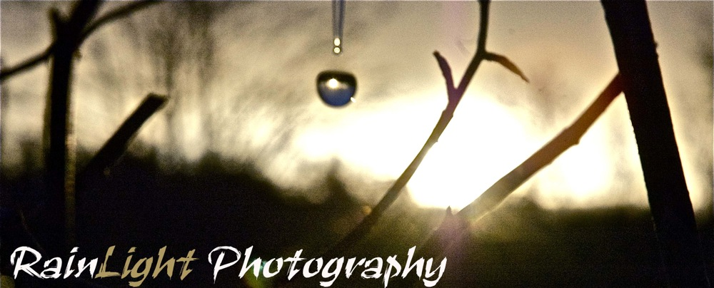 RainLight Photography