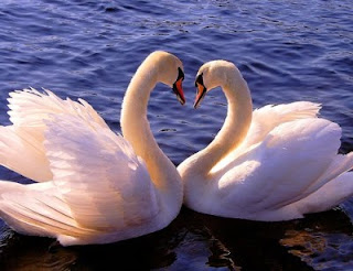 Cara menjaga hubungan agar tetap harmonis