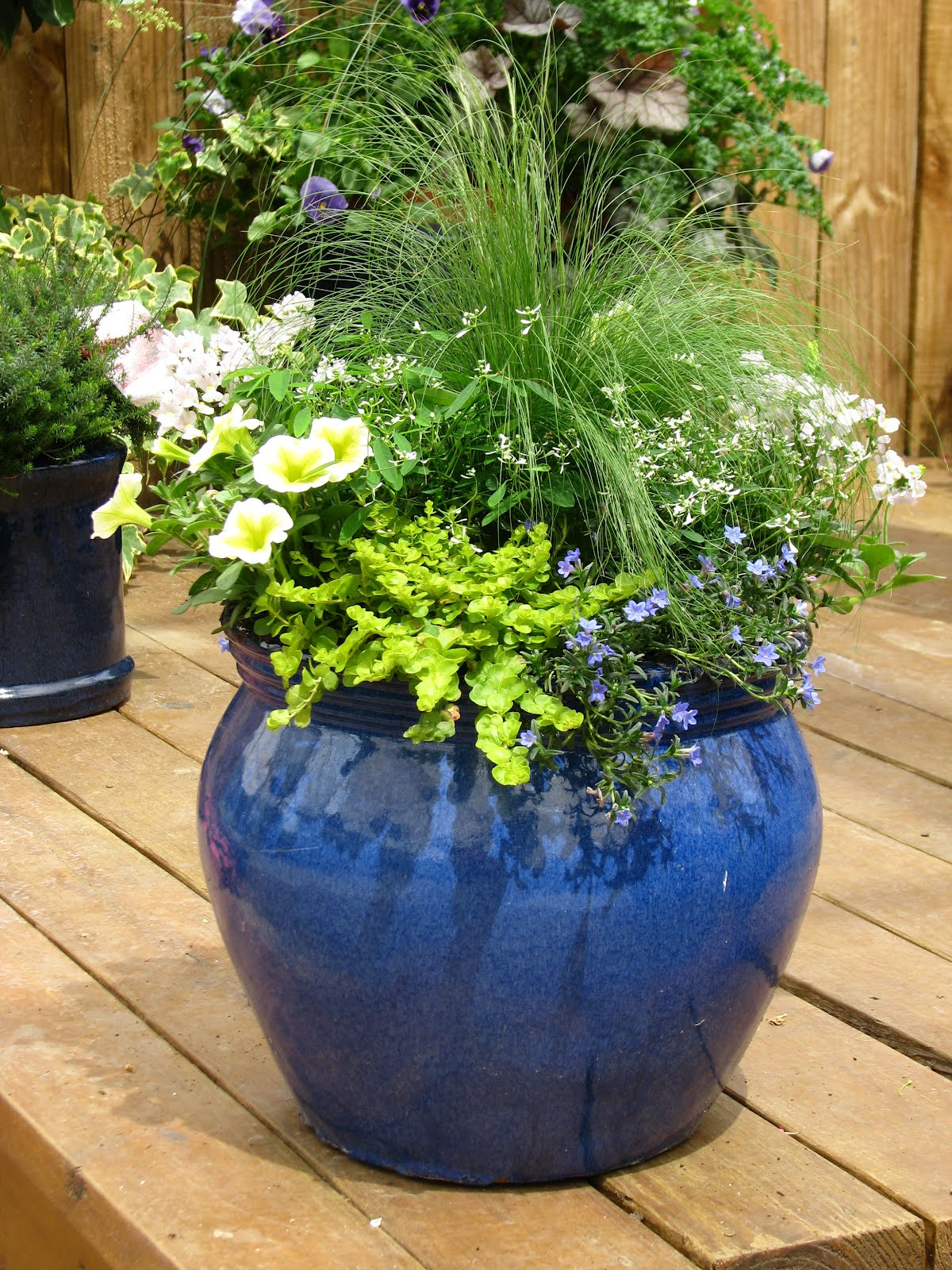 Large container gardening ideas annual flower garden for Large garden pot designs