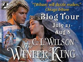 The Winter King by C.L. Wilson