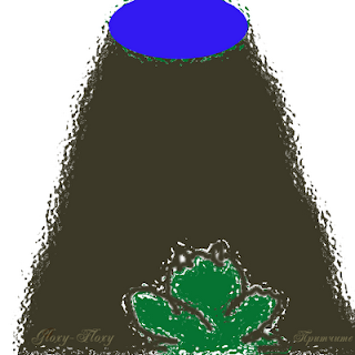 Жаба на дъното на кладенеца