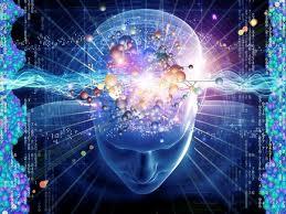 Existe un campo vibratorio que conecta todas las cosas.