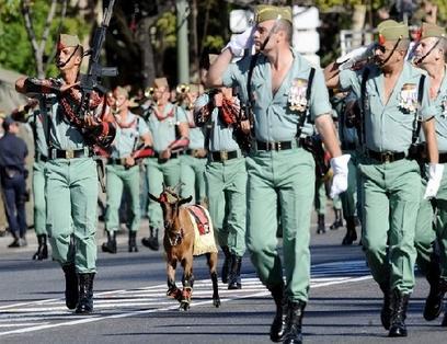 pablo en la fiestas nacional del 12 de octubre, legión