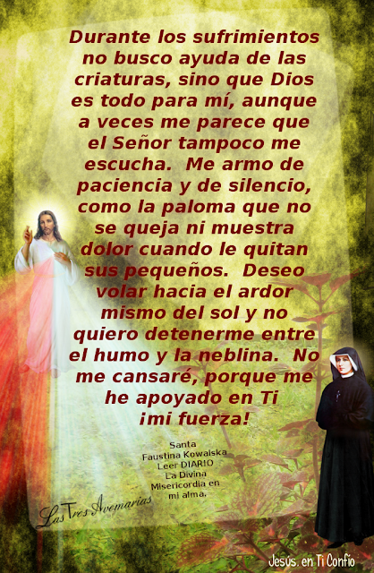 anotacion del diario la divina misericordia hecha por santa faustina