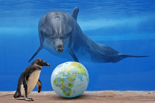 World Oceans Day June 8th 2012,