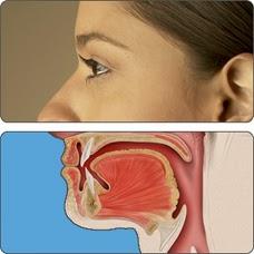 Human Papillomavirus HPV  HealthyWomen