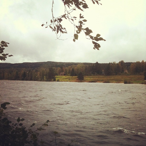 view from sjövik in swedish värmland a beautiful but windy autumn morning