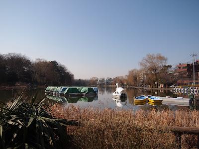 石神井公園の石神井池