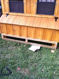 Custom Chicken Coop transport