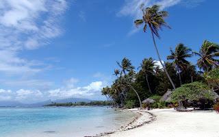 sea beach (14)