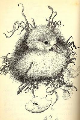 ilustración retro pájaros