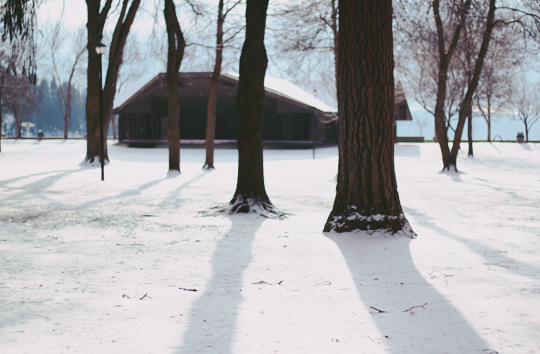 Coeur d'Alene park winter