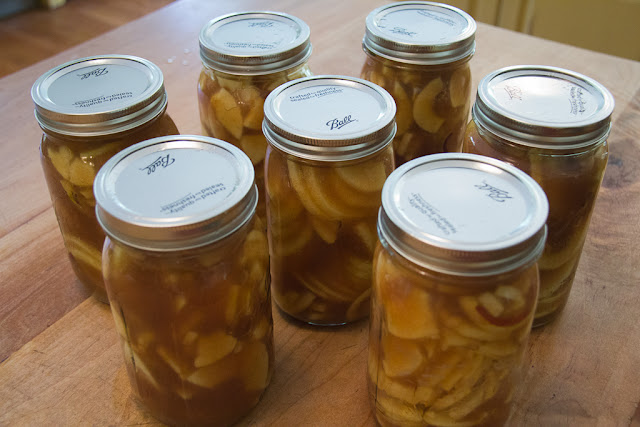 Joyfulmomofmany Apple Pie In A Jar