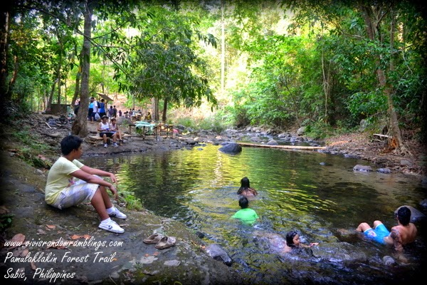 Pamulaklakin Forest Trail, Subic