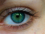 The electrical signal from each eye is transmitted to the brain by its own .
