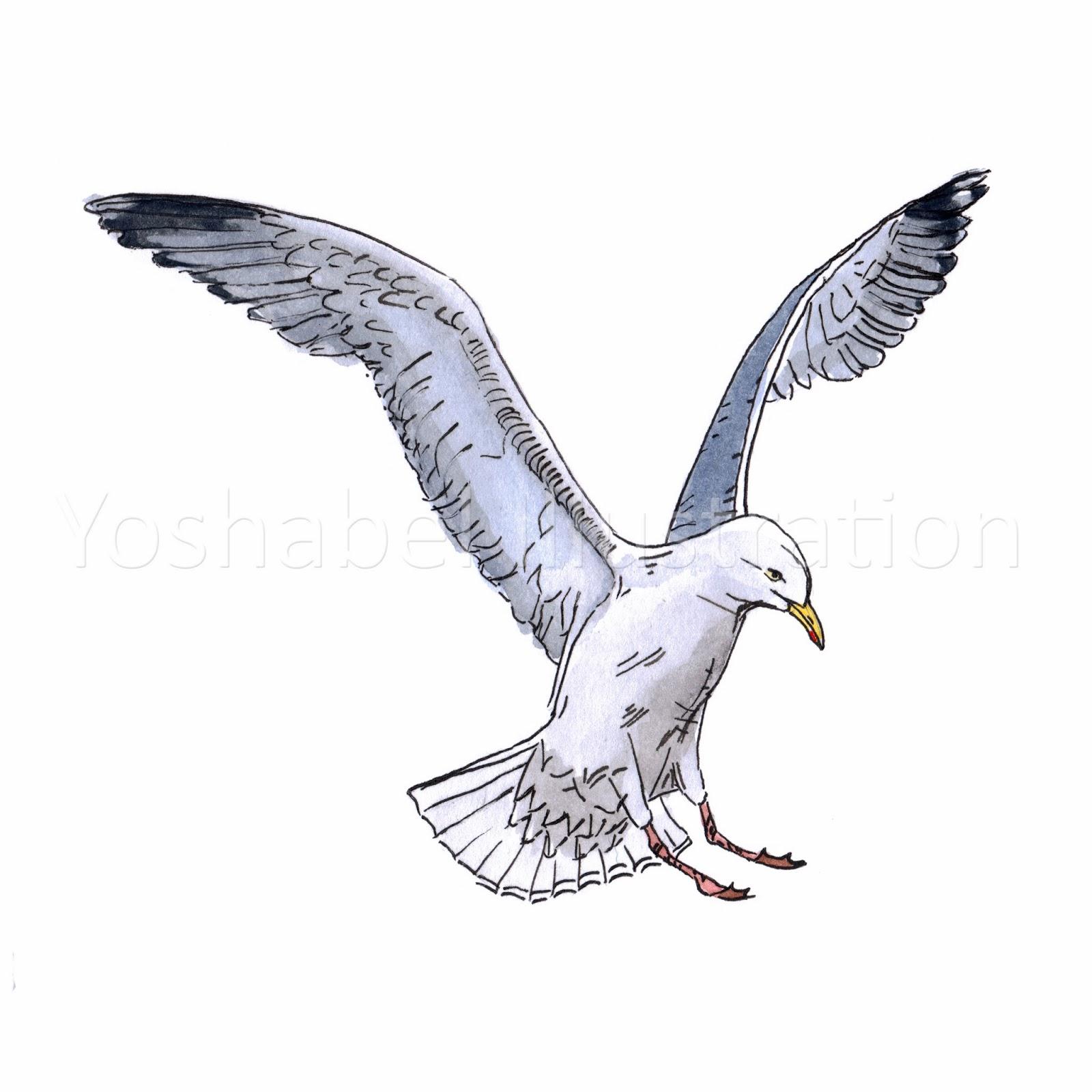 Yoshabel Illustration: Seagull & Seahorse: sophieyoshabel.blogspot.com/2014/02/blog-post.html