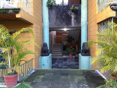 Leones en la entrada de mi casa