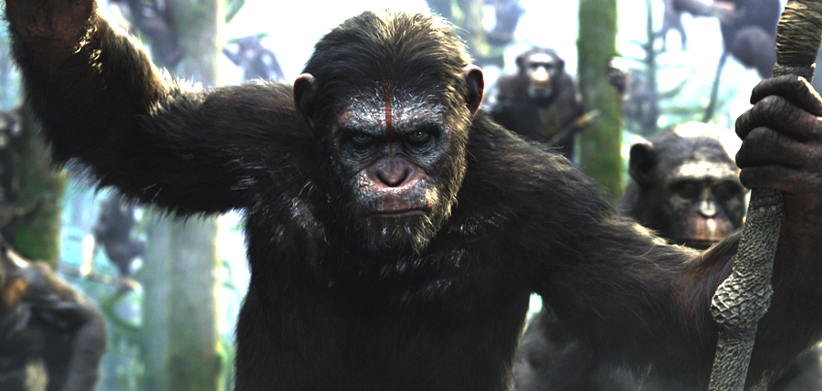 Cimpanzeul Cezar conduce rebeliunea primatelor în Dawn Of The Planet Of The Apes