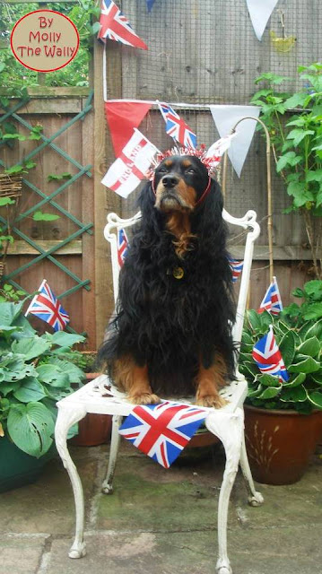 Molly The Wally celebrates the Queens' diamond Jubilee!