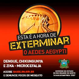 É hora de EXTERMINAR o Aedes Aegypti