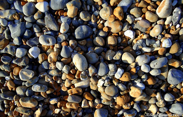 photo of pebbles from Brighton Pebble Beach