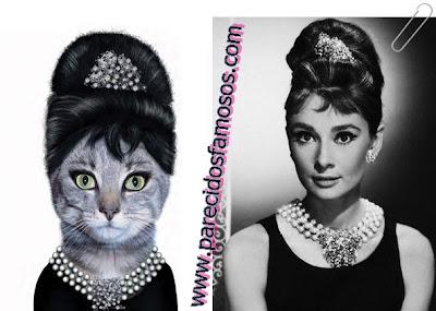 gata con Audrey Hepburn