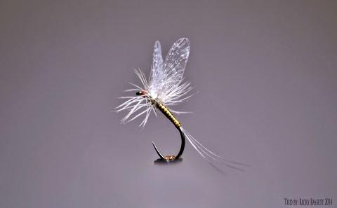 http://www.castersonlineflyshop.com/joseph-ludkin-reel-wings-upwings/