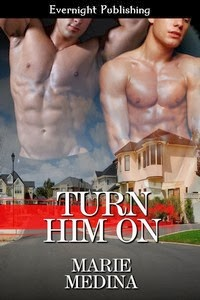 Turn Him On (Book 2)