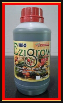 EZIGROW TRIAL 500ML