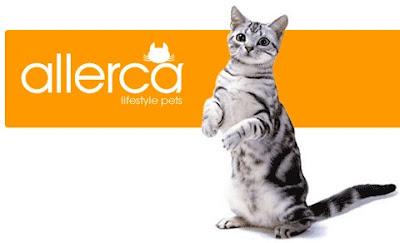"""""""Siêu mèo"""" Allerca không gây dị ứng"""