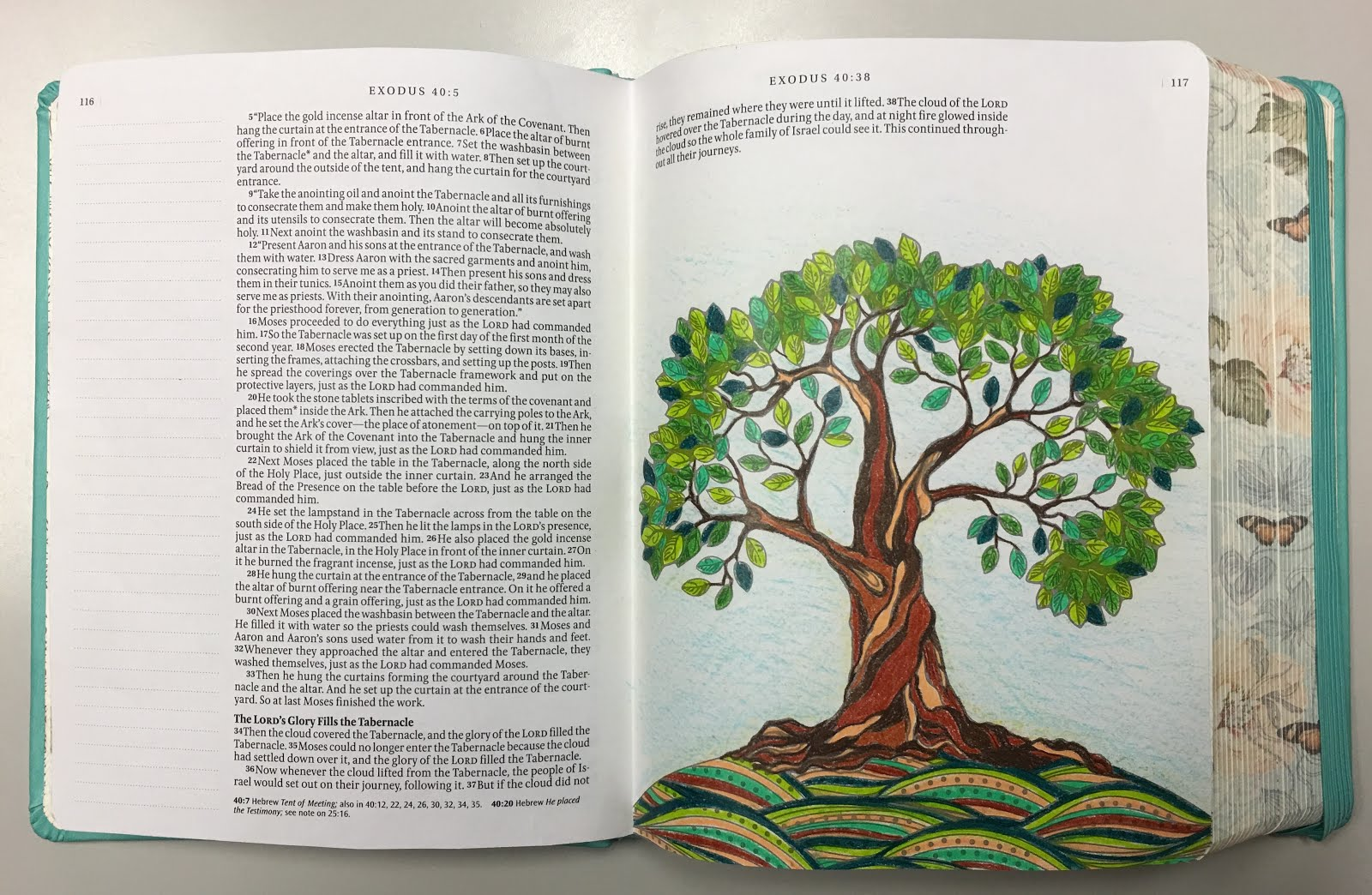 ESV Study Bible, TruTone Mahogany Trellis Design Imitation Leather 20,000+ Notes