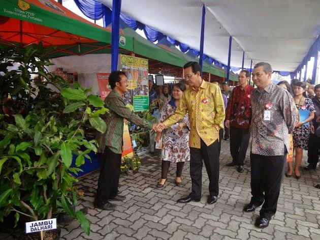 Bela-Beli Produk Lokal Indonesia