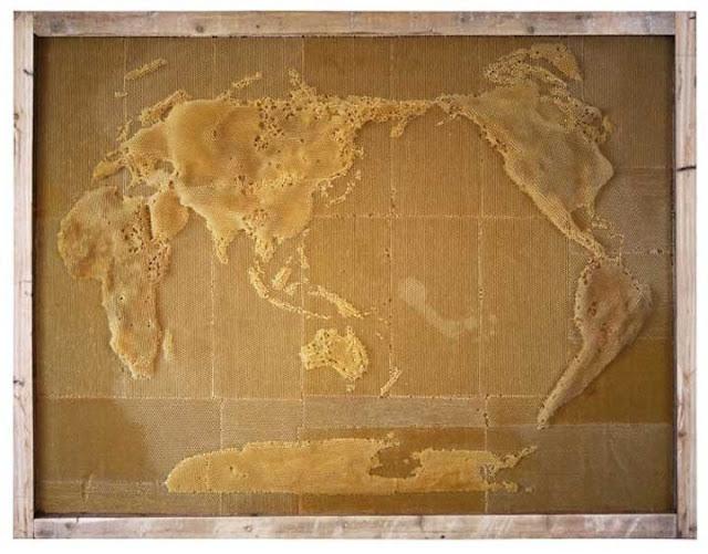Luar-Biasa-Ternyata-Peta-Dunia-ini-Dibuat-oleh-Lebah3