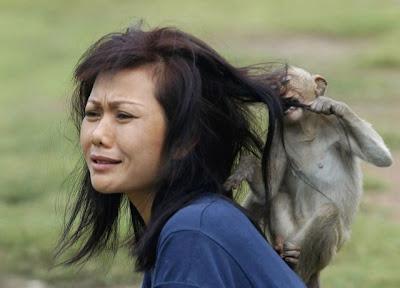 Tretas de mulheres com animais