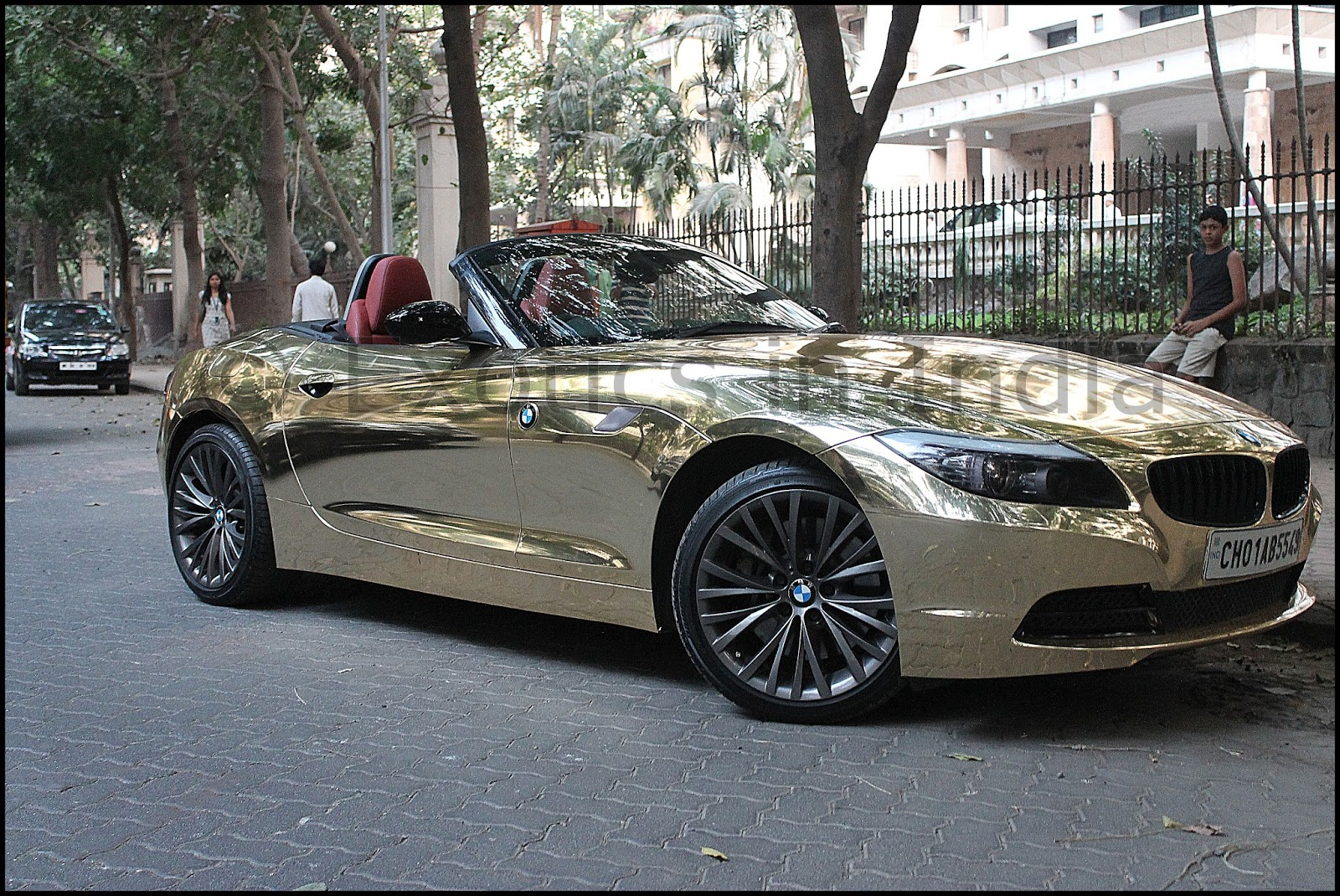 Exotics In India Midas Touch Or The Golden Egg D A D S