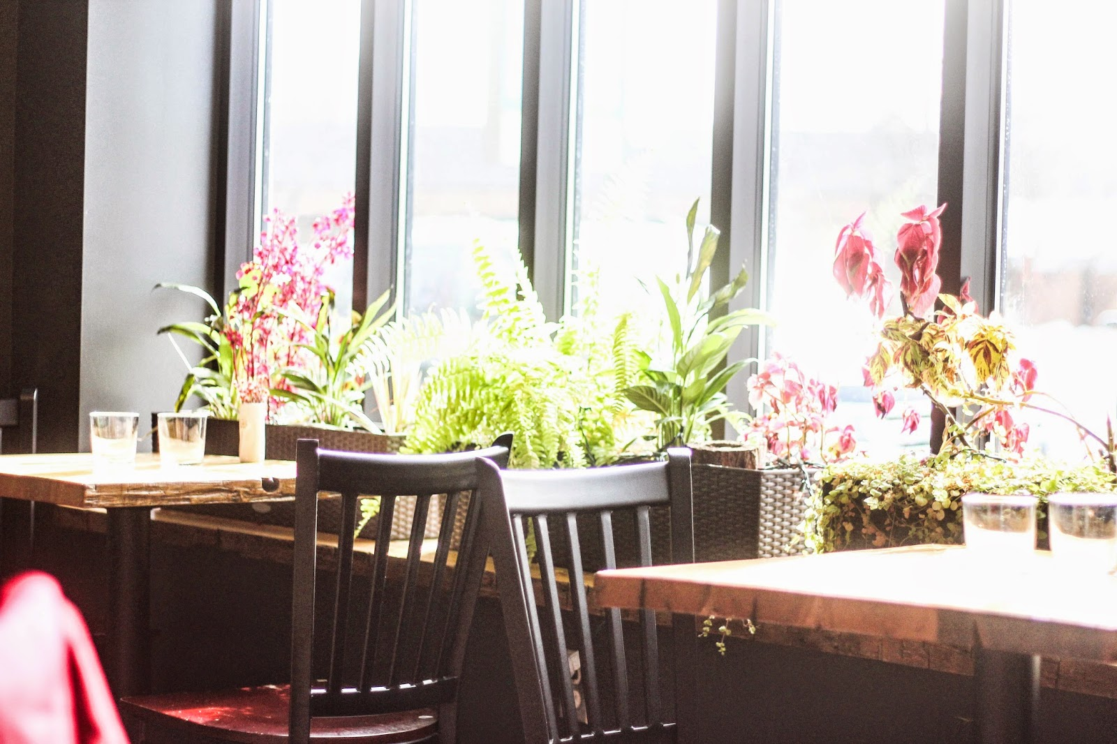 Terra, Grand Rapids, Restaurant, Dining, Project Soiree