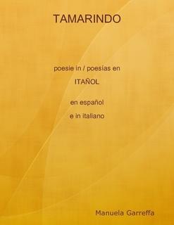 Mi eBook de poesías en itañol