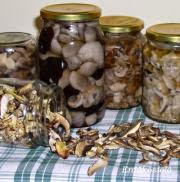 Erdei gombák tartósítása, gombakonzerválás