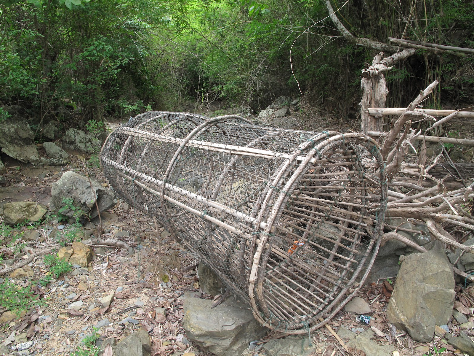 Catfish traps related keywords catfish traps long tail for Homemade fish traps