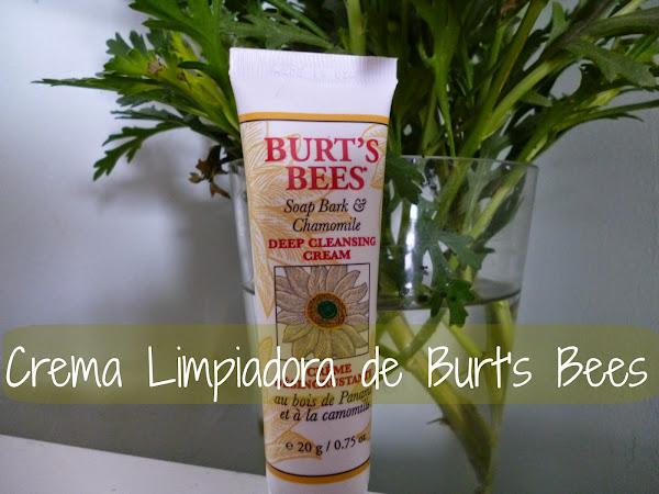 Crema Limpiadora de Burt's Bees
