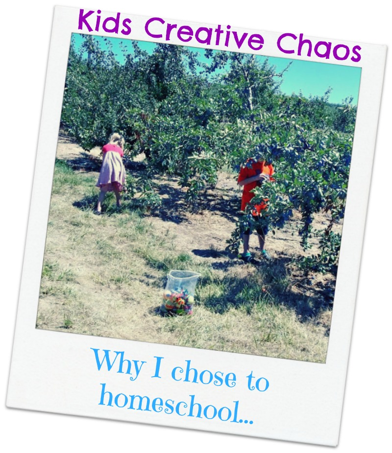 Why homeschool How to free homeschooling online