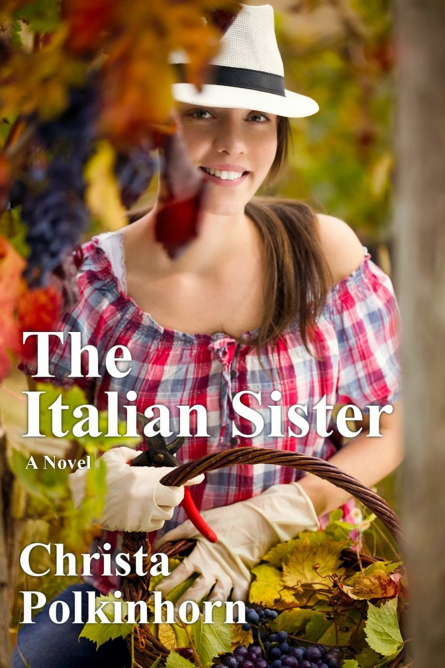 The Italian Sister (The Wine Lover's Daughter, Book 1) CLICK ON THE BOOK COVERS BELOW.