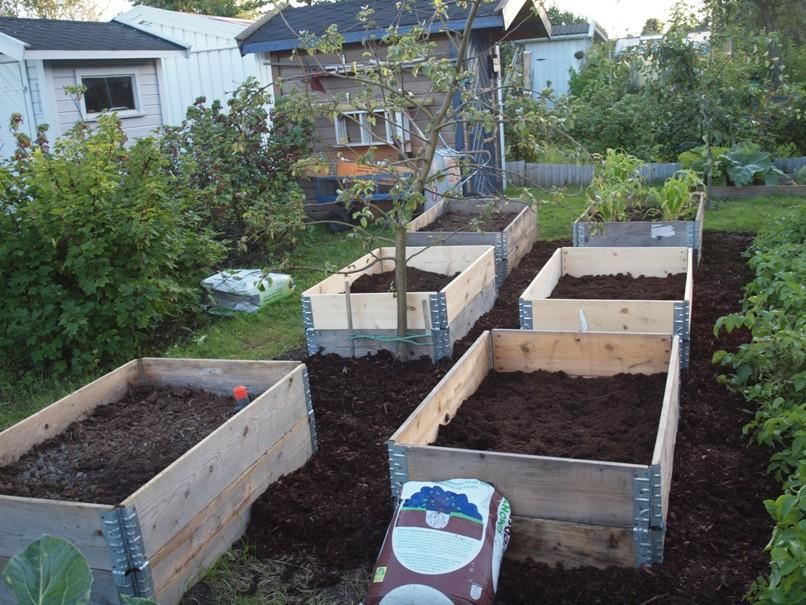 Blomsterguri`s hage: prosjekter i boks
