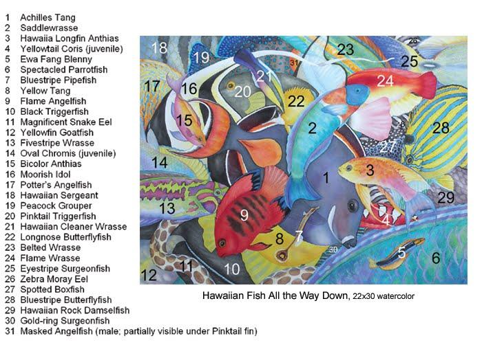 Lucy 39 s artworld hawaiian fish id chart for Hawaiian fish names and pictures