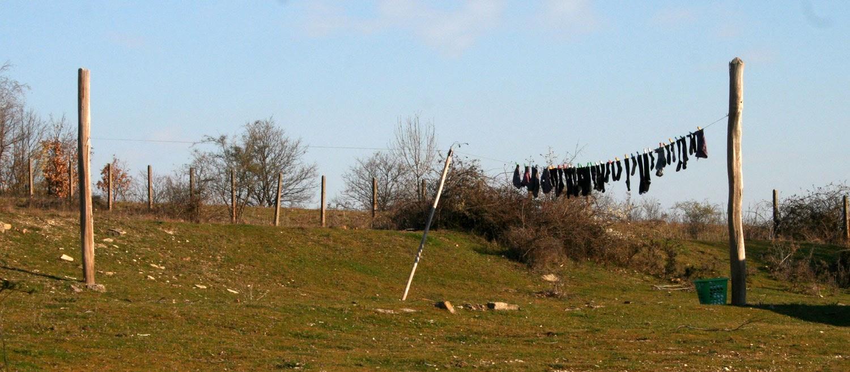 Hung up washing