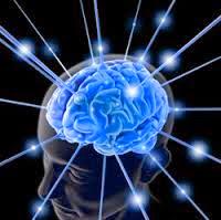 Puasa Selain Terkesan Cool Juga Membuat Cerdas Otak