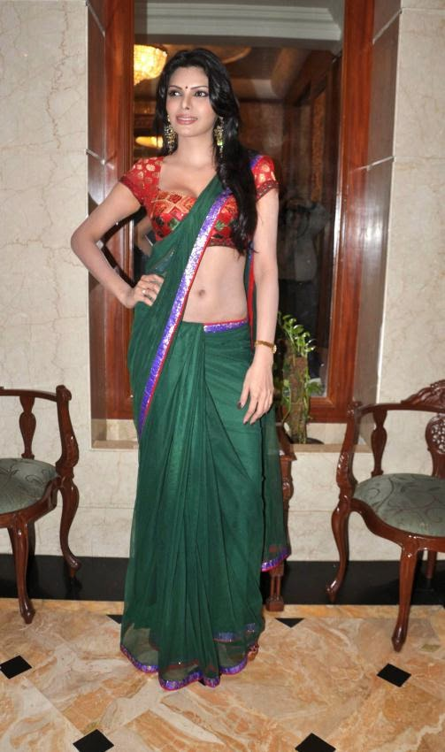 Sherlyn Chopra hot hd pics in green saree