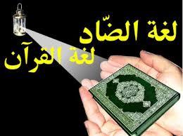 كنز العرب