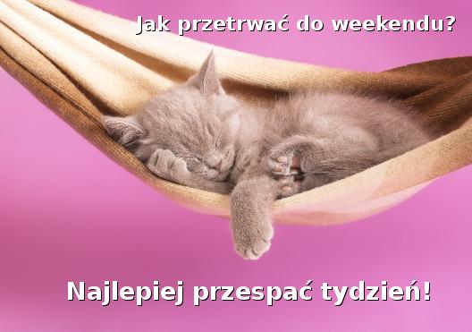 Jak przetrwać do weekendu?